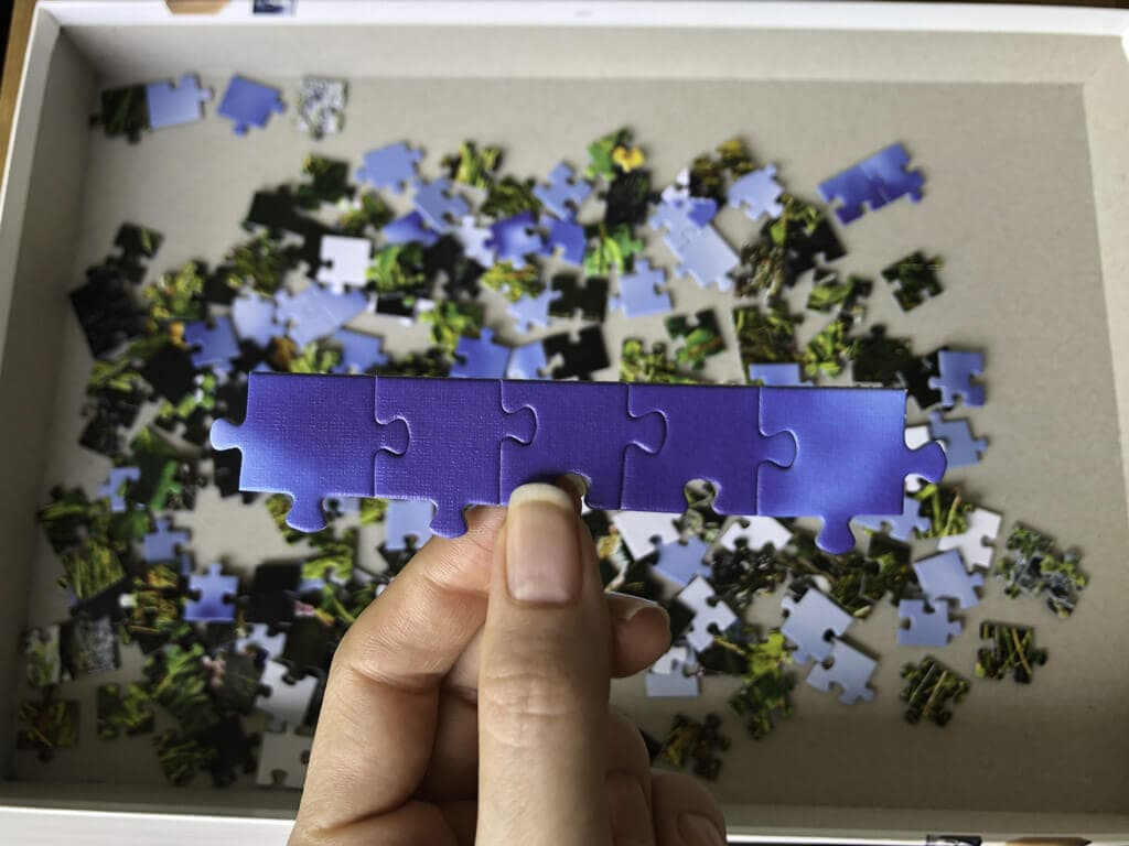Edge puzzle pieces held in hand