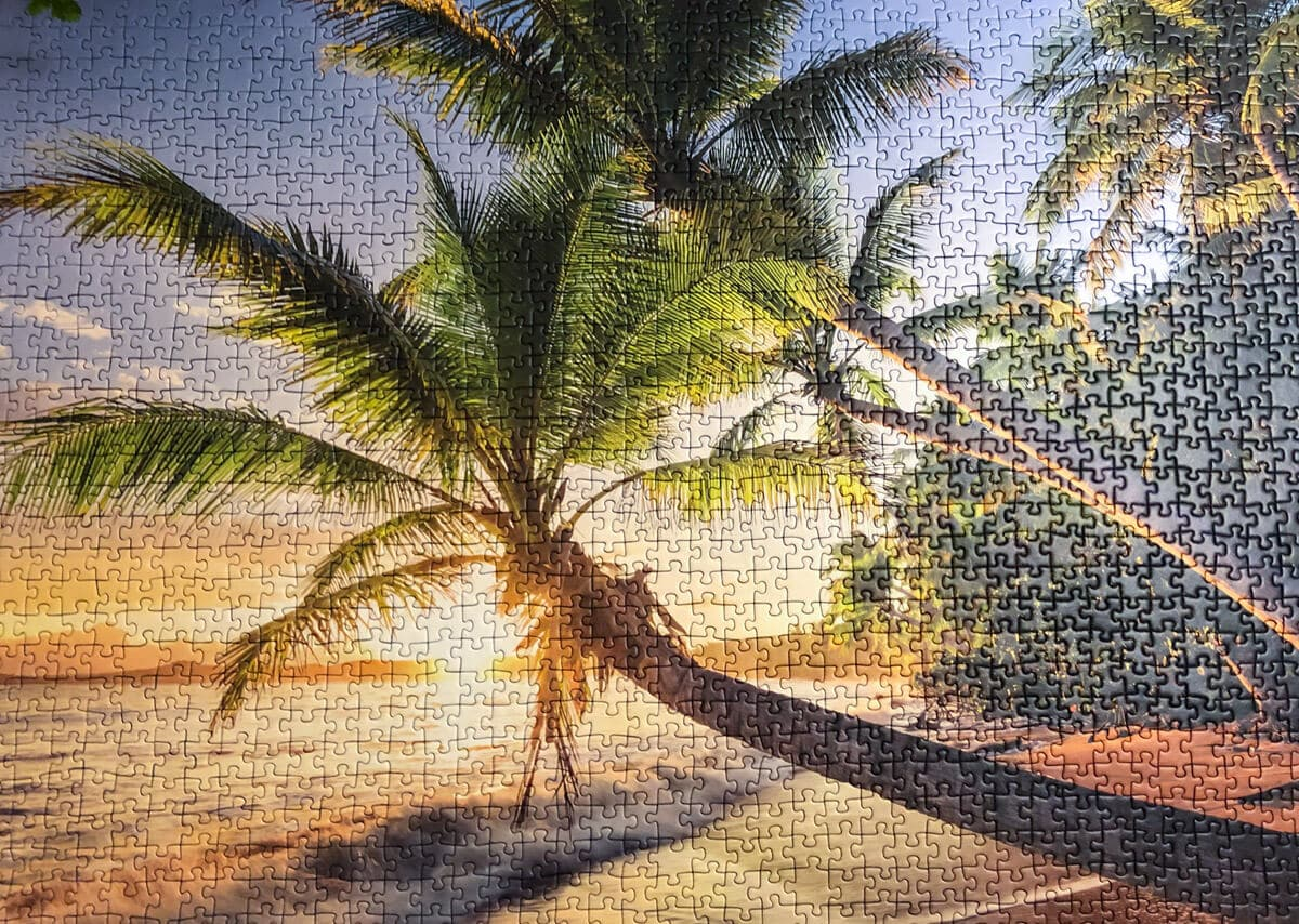 Finished puzzle of a beach